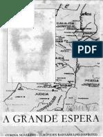 A Grande Espera (psicografia Corina Novelino - espirito Euripedes Barsanulfo).pdf