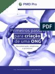 eBook Criacao de Ong Pmd Pro