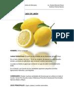 Perfil Del Mercado de Limón 2016