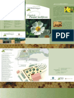 Plantasmeliferas.pdf