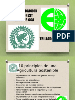 Re Certificacionrainforest Cca1 110411164758 Phpapp02