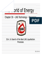 30D - In Search of the Best LNG Liquefaction Processes