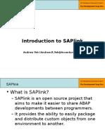 1 - Part 1 - Introduction to SAPlink