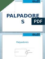 PALPADORES.pptx