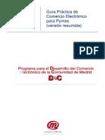Guia Pymes Comercio Electronico Resumen.pdf