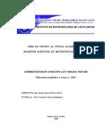 2006. IBP. MSc. BV. Pérez Pérez Jorge L.