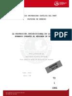 DERECHO-PALACIOS_MCBRIDE_ROSA_PROTECCION_EXCEPCION.pdf