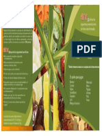 Evidencia 1 Material Informativo Sobre La Presentación de Productos