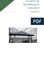 Informe Técnico Visita CURUMUY