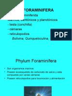 Clase 2 - Div. Animal. 2016-i. Reino Protista (Protozoa)