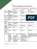 Tabel Perbedaan Zygomycota