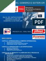 Guia Exportacion