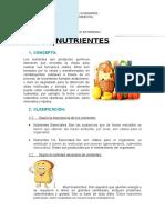 Epi Nutrientes