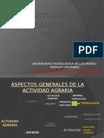 Actividad Agraria en El Peru
