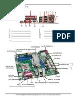 Identificar Cada Componente Placa Base Hoja de Aplicacion