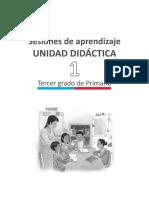 1-orientaciones-generales-u1-3grado (1).pdf