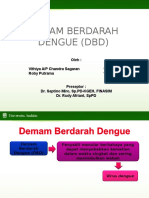 dhf ppt