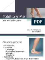 Tobillo y Pie, Ortopedia y Traumatología.