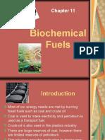 Biochemical Fuels (2)