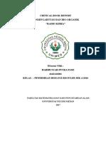 Critical Book Report Kimum II