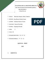 Informe 5 Saltos Cuanticos Christian