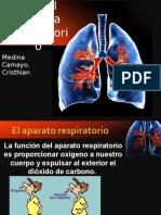 Fisiopatologia Del Sistema Respiratorio 3