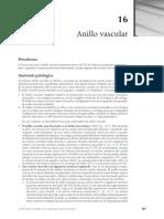 Anillo Vascular