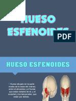 105159071-Hueso-Esfenoides.ppt