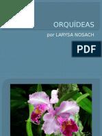 utpllarysanosachcomputacinbsicaorqudeas-090702004853-phpapp01
