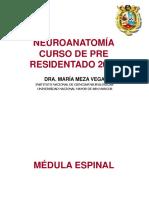 Neuronatomía 2010 Dra Maria Meza