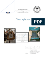 GRAN INFORME - copia.pdf