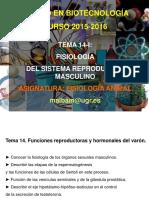 TEMA-14-I-FISIOLOG__A DEL SISTEMA REPRODUCTOR MASCULINO.pdf