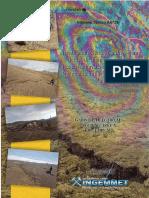 Informe Puno - Parina 2016
