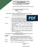 307490137-SK-Persyaratan-Penanggungjawab-Radiologi.doc