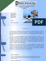 Hidrocarburos Aromáticos Policíclicos Expo