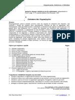 Estrutura Das Organizacoes