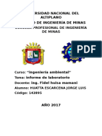 Informe de Laboratorio Ambiental 2