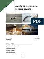 CONTAMIACIÓN EN EL ESTUARIO DE BAHIA BLANCA.docx