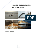 Contamiación en El Estuario de Bahia Blanca i