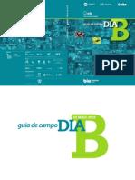 GuiaCampoDiaB