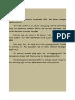Contoh KARANGAN AUTOBIOGRAFI.docx