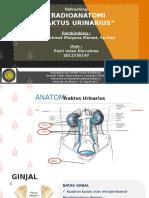 refreshing radioanatomi traktus urinarius