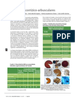 07 Hongos micorrozicos.pdf