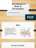 Microfinance Risk & Strategies