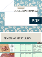 salud reproductiva.ppt