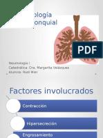 fisiopatologiaasma-160429232234.pptx