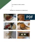 Imagenes de proyecto de fermentacion.docx