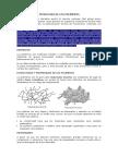 Tecnología de Los Polímeros