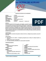 AUTOCADCIVIL3DAVANZADO.pdf