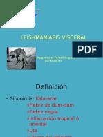 TEMA v Leishmaniasis Visceral